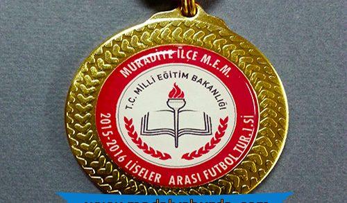 sınıf etkinliği madalyası