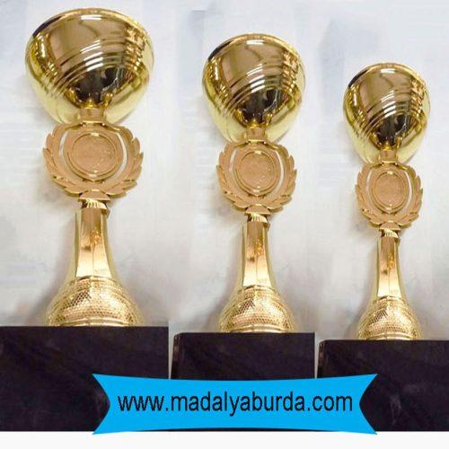 ödül kupası