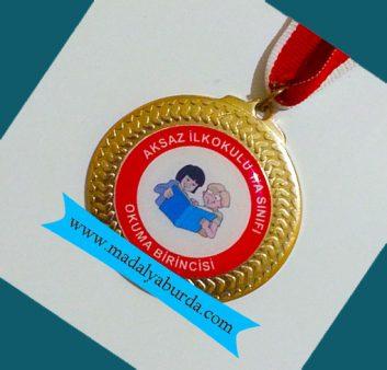 kitap kurdu madalyası