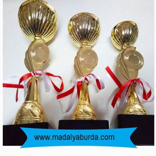 kupa ödülü
