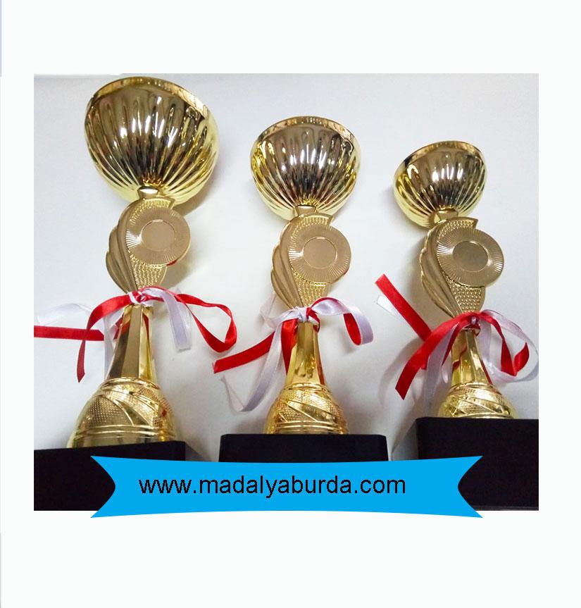 madalya burda kupa ödülü