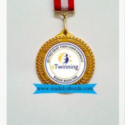 okul başarı madalyası